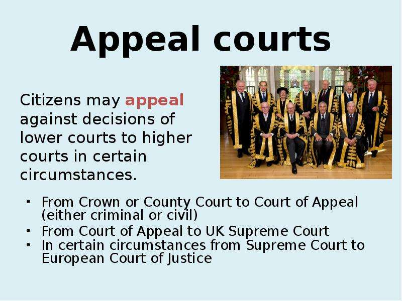 is the court of appeal an