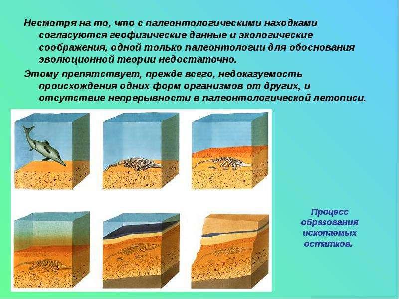 Несмотря на то, что с палеонтологическими находками согласуются геофизические данные и экологические