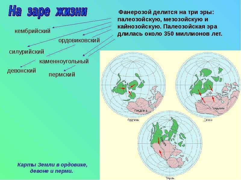 Фанерозой делится на три эры: палеозойскую, мезозойскую и кайнозойскую. Палеозойская эра длилась око