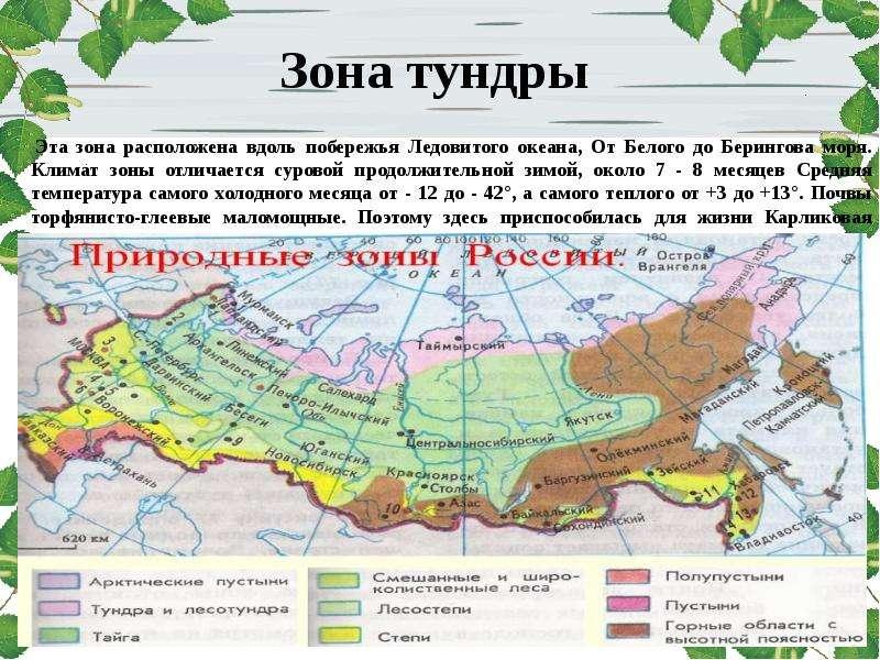 для где находится тундра на карте россии фото выбрать наиболее близкий