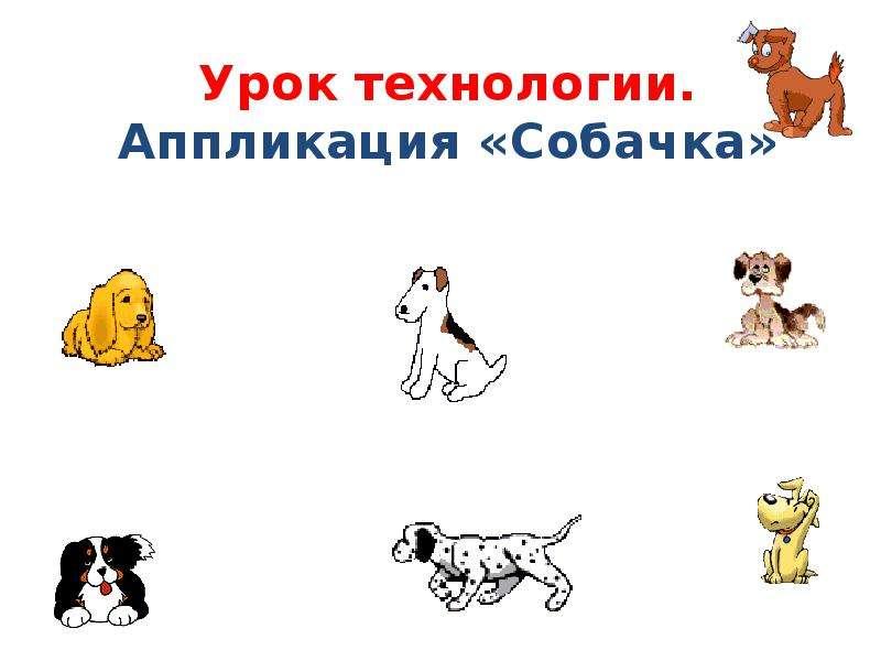 Аппликация «Собачка» - презентация, доклад, проект скачать