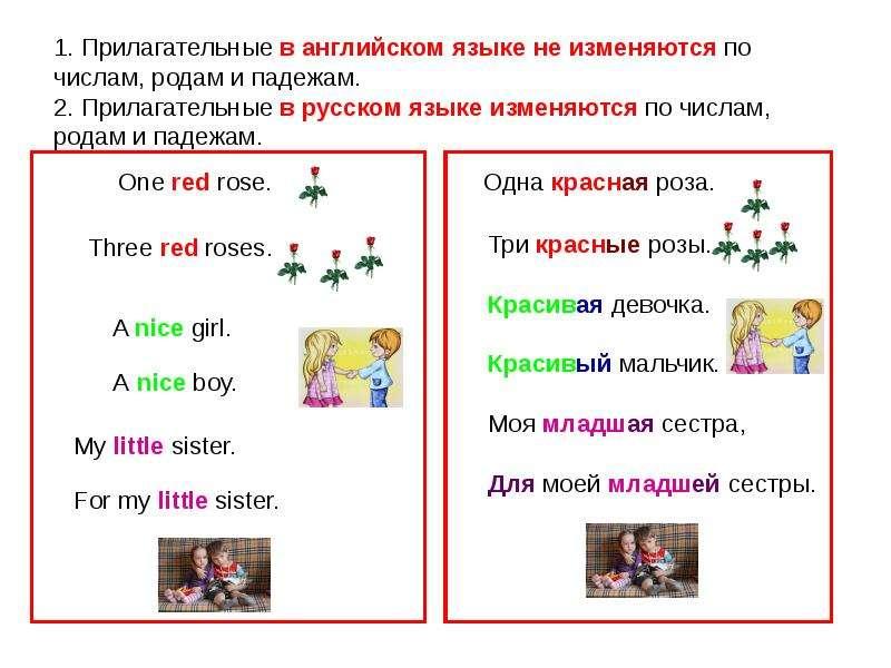 1. Прилагательные в английском языке не изменяются по числам, родам и падежам. 2. Прилагательные в р