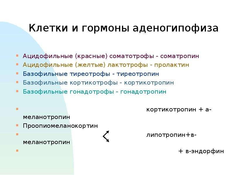 Клетки и гормоны аденогипофиза Ацидофильные (красные) соматотрофы - соматропин Ацидофильные (желтые)