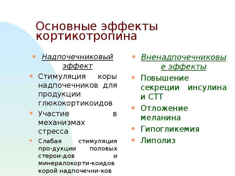 Основные эффекты кортикотропина Надпочечниковый эффект Стимуляция коры надпочечников для продукции г