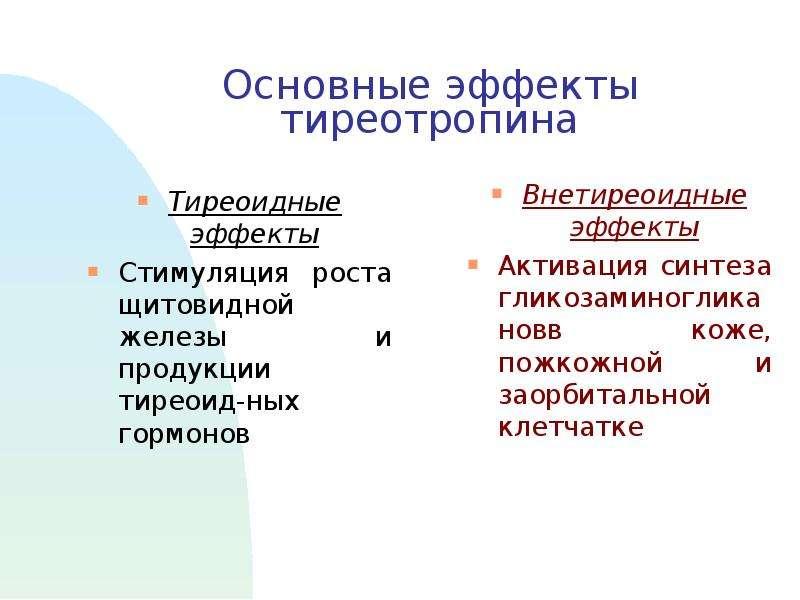 Основные эффекты тиреотропина Тиреоидные эффекты Стимуляция роста щитовидной железы и продукции тире