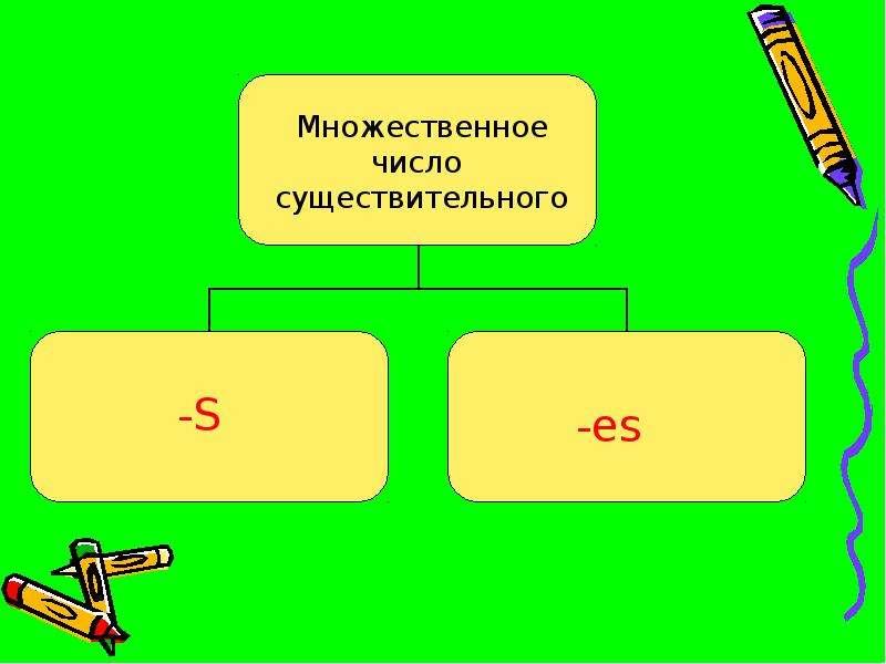 Множественное число существительного, слайд 3