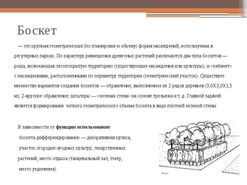 Боскет — это крупная геометрическая (по планировке и объему) форма насаждений, используемая в регуля
