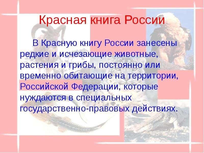 Красная книга России В Красную книгу России занесены редкие и исчезающие животные, растения и грибы,