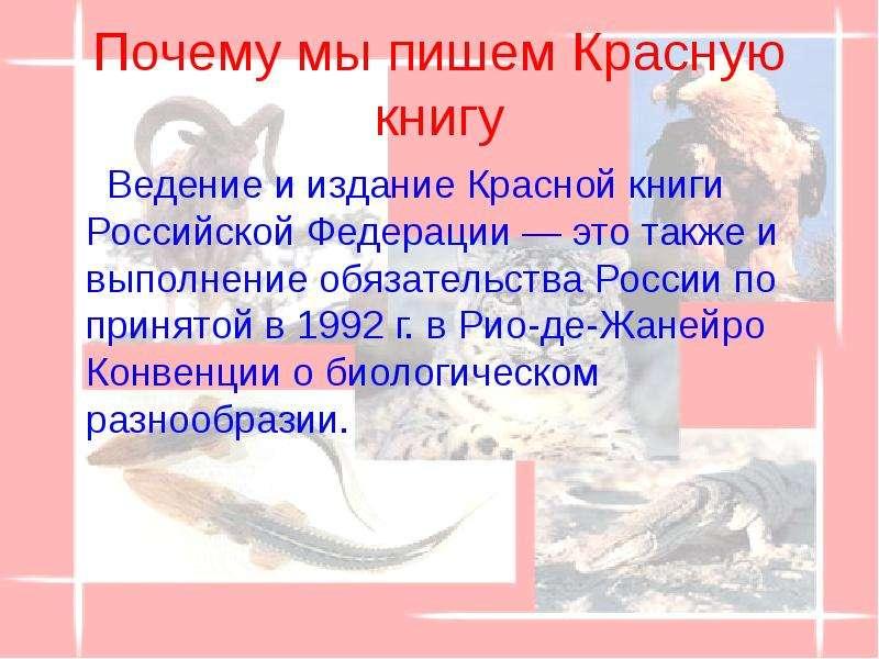 Почему мы пишем Красную книгу Ведение и издание Красной книги Российской Федерации — это также и вып