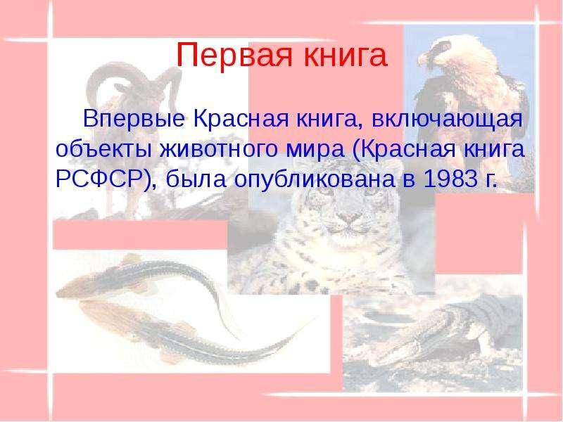 Первая книга Впервые Красная книга, включающая объекты животного мира (Красная книга РСФСР), была оп