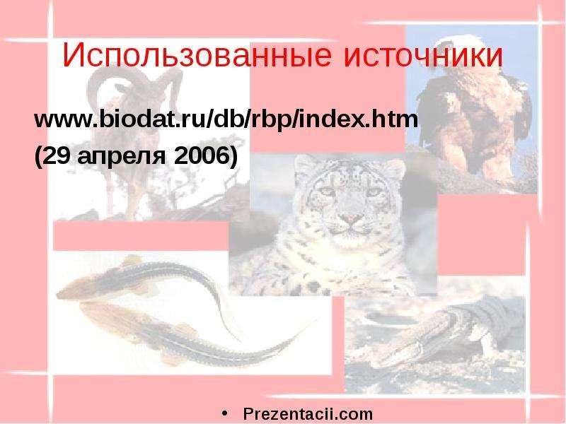Использованные источники (29 апреля 2006)