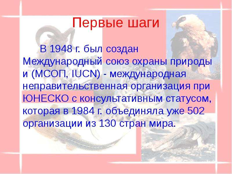 Первые шаги В 1948 г. был создан Международный союз охраны природы и (МСОП, IUCN) - международная не
