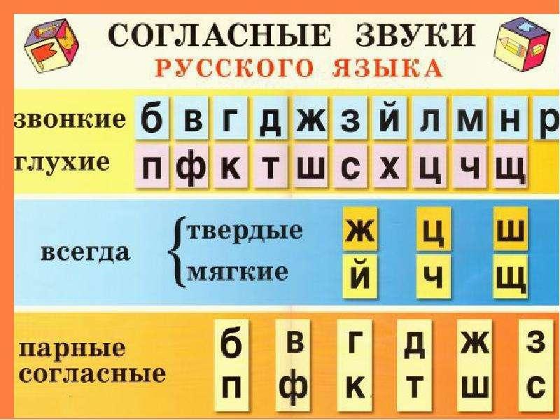 Что изучает орфография, слайд 14
