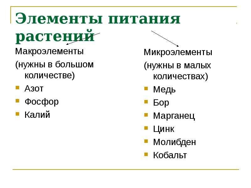 Элементы питания растений Макроэлементы (нужны в большом количестве) Азот Фосфор Калий