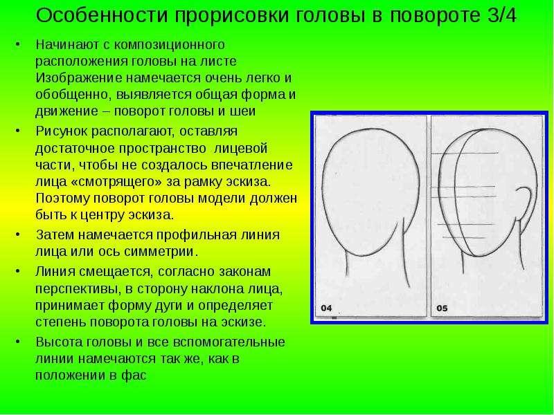 Особенности прорисовки головы в повороте 3/4 Начинают с композиционного расположения головы на листе