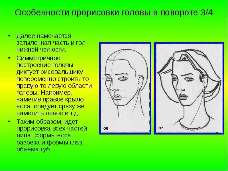 Особенности прорисовки головы в повороте 3/4 Далее намечается затылочная часть и гол нижней челюсти.