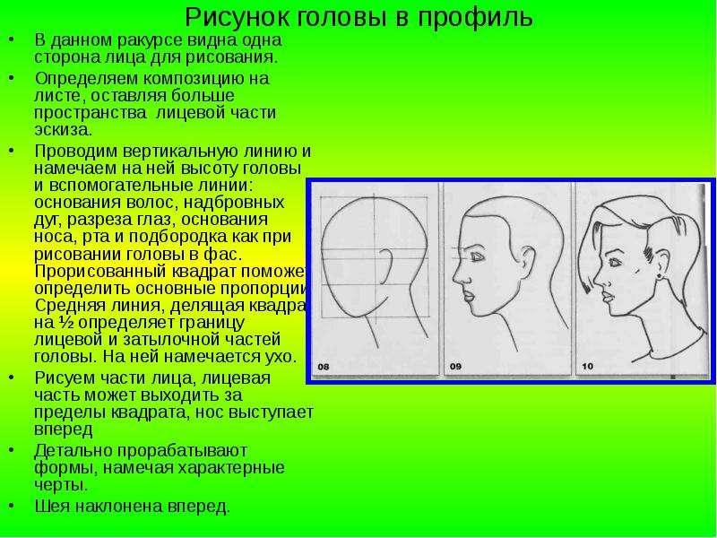 Рисунок головы в профиль В данном ракурсе видна одна сторона лица для рисования. Определяем композиц