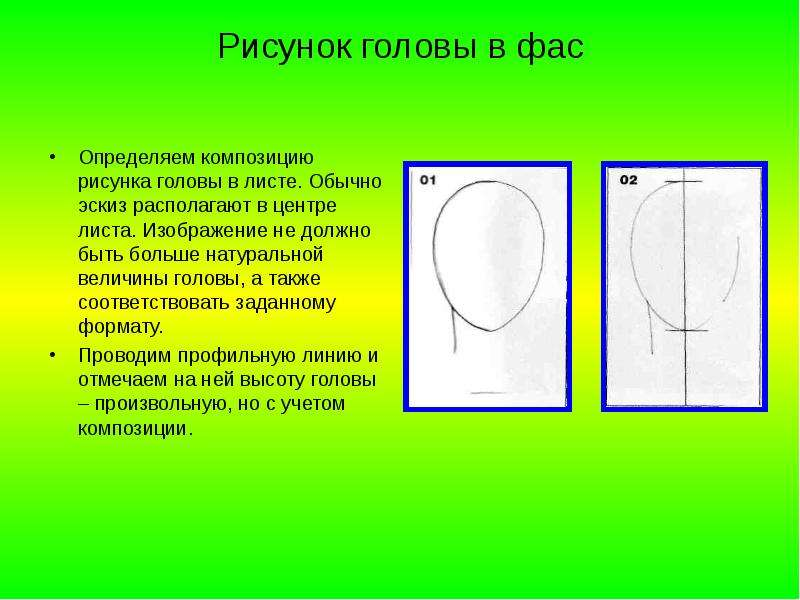 Рисунок головы в фас Определяем композицию рисунка головы в листе. Обычно эскиз располагают в центре
