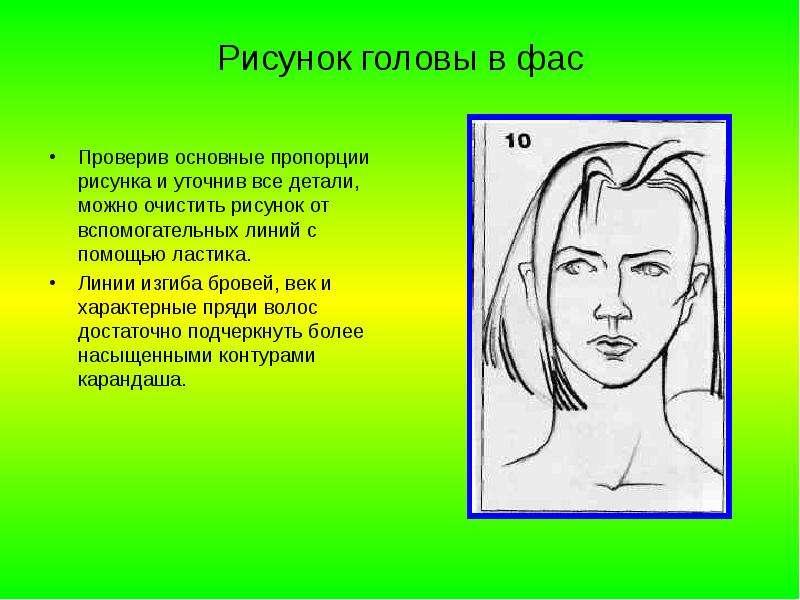 Рисунок головы в фас Проверив основные пропорции рисунка и уточнив все детали, можно очистить рисуно