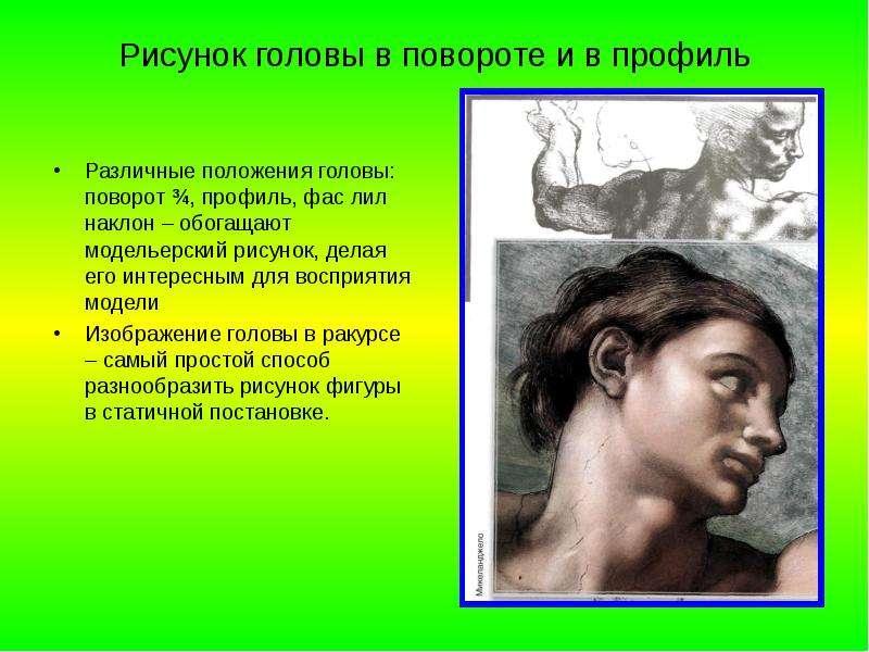 Рисунок головы в повороте и в профиль Различные положения головы: поворот ¾, профиль, фас лил наклон
