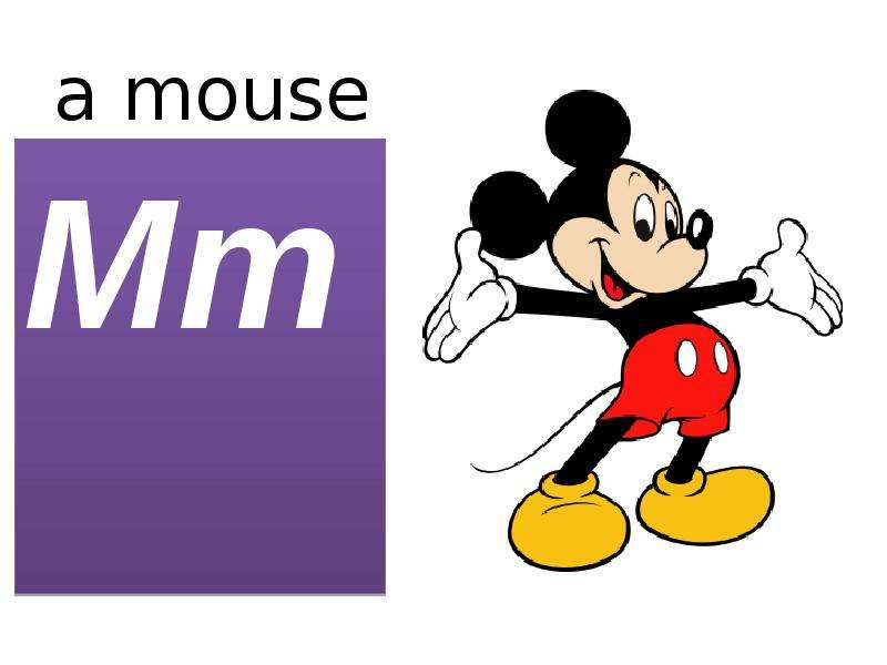 a mouse Mm