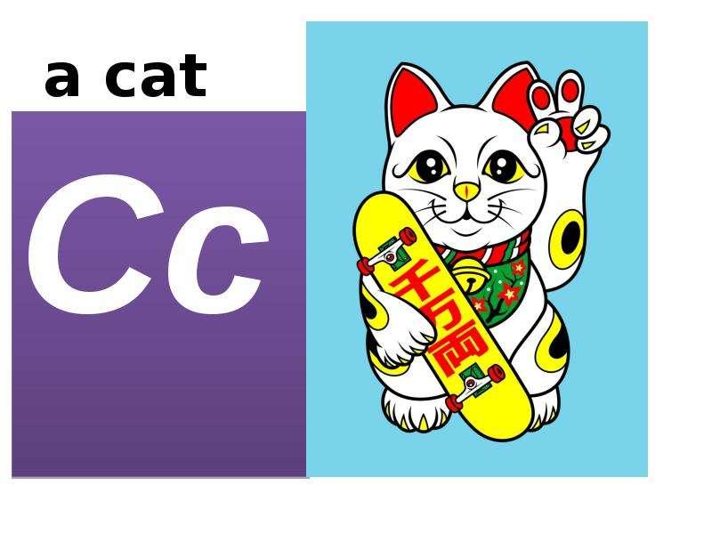 a cat Cc