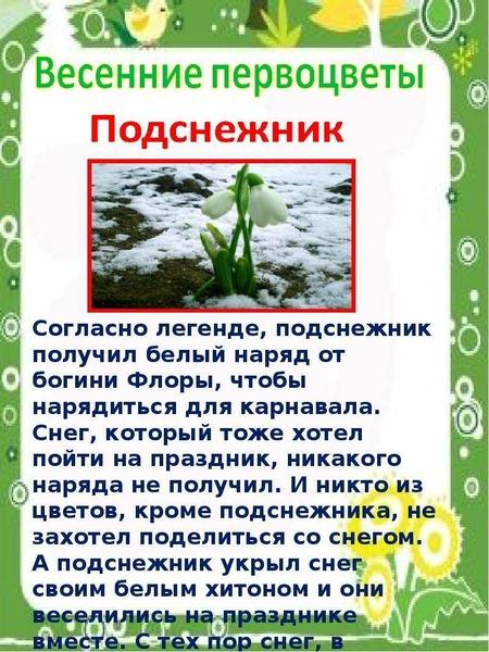 информация о весне в картинках