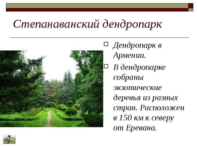 Степанаванский дендропарк Дендропарк в Армении. В дендропарке собраны экзотические деревья из разных