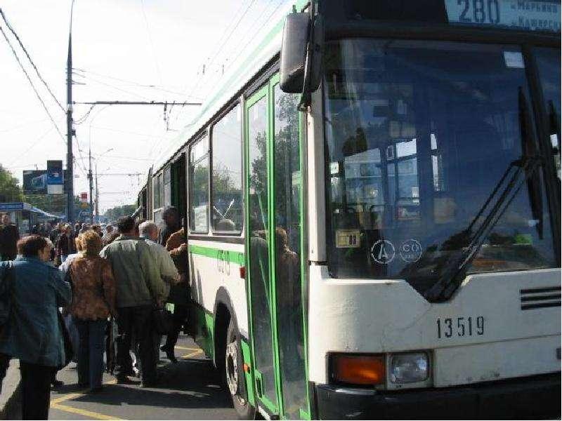 какой автобус будет ходить заместо 81 маршрута