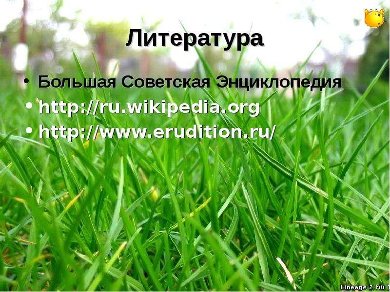 Литература Большая Советская Энциклопедия
