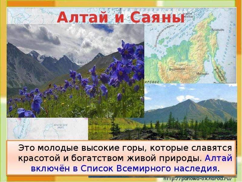 Это молодые высокие горы, которые славятся красотой и богатством живой природы. Алтай включён в Спис