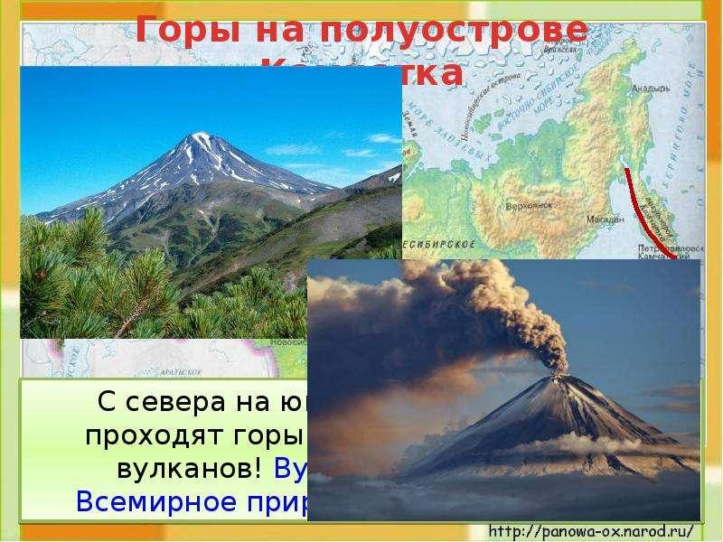 С севера на юг по всему полуострову проходят горы. Здесь 28 действующих вулканов! Вулканы Камчатки –