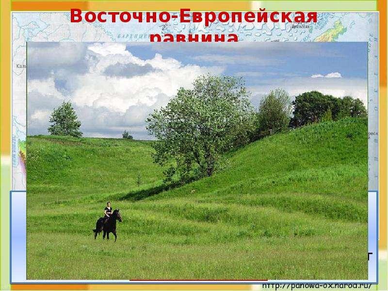 Восточно-Европейская равнина Это холмистая равнина. На карте она изо-бражена светло-зелёным цветом.