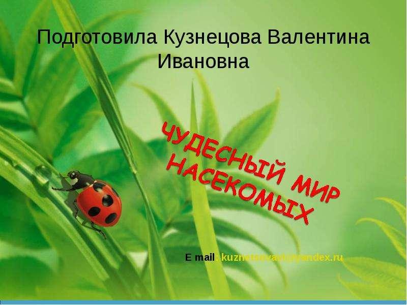 Чудесный мир насекомых