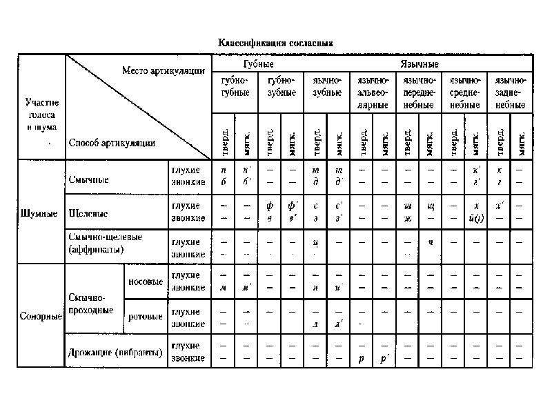 Анатомия, физиология и патология органов слуха речи и зрения, слайд 55