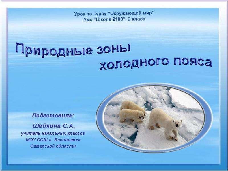 Презентация Природные зоны холодного пояса