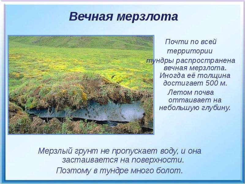 Мерзлый грунт не пропускает воду, и она застаивается на поверхности. Мерзлый грунт не пропускает вод