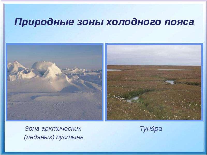 Зона арктических Зона арктических (ледяных) пустынь