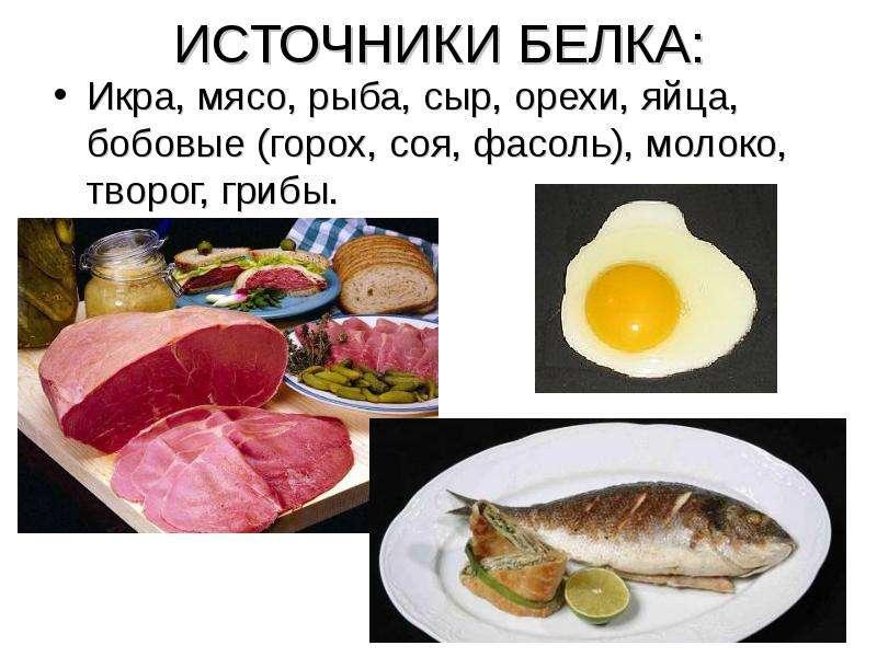 ИСТОЧНИКИ БЕЛКА: Икра, мясо, рыба, сыр, орехи, яйца, бобовые (горох, соя, фасоль), молоко, творог, г