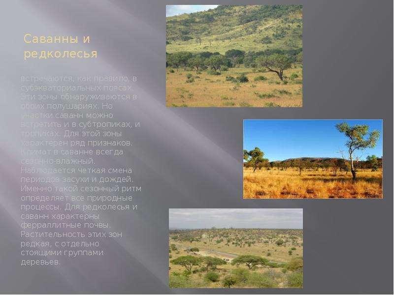 В саваннах и редколесьях почвы красно-бурые