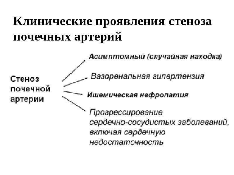 Вазоренальная артериальная гипертензия, рис. 5