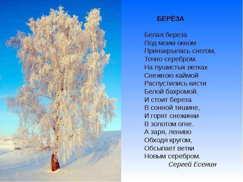 Стихи о зиме красивые русских поэтов для детей