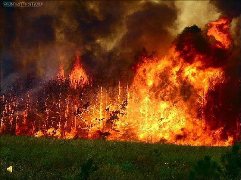 На Среднем Урале лесной пожар оставил без газа более 15 тысяч человек.