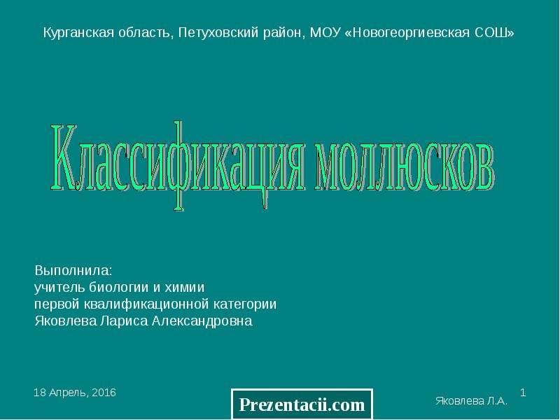 Презентация КЛАССИФИКАЦИЯ МОЛЛЮСКОВ