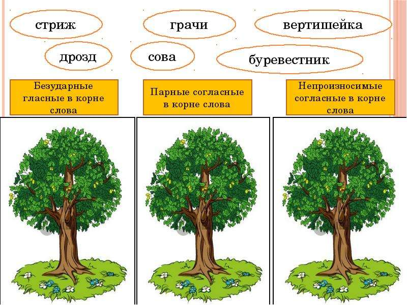 Знакомство с понятием «сложные слова», слайд 4
