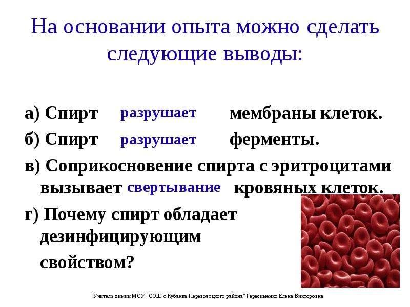 На основании опыта можно сделать следующие выводы: а) Спирт мембраны клеток. б) Спирт ферменты. в) С