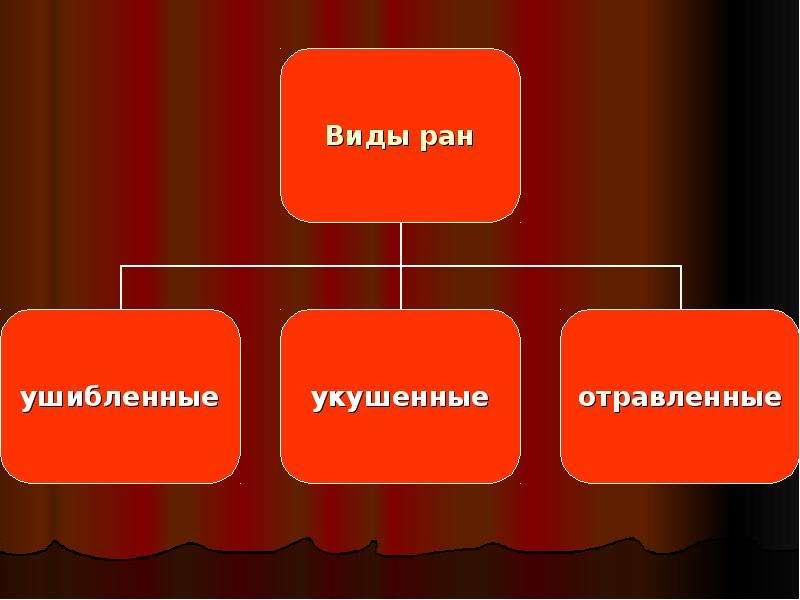 Основы медицинских знаний, слайд 5