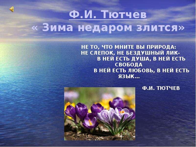 Ф. И. Тютчев «Зима недаром злится»