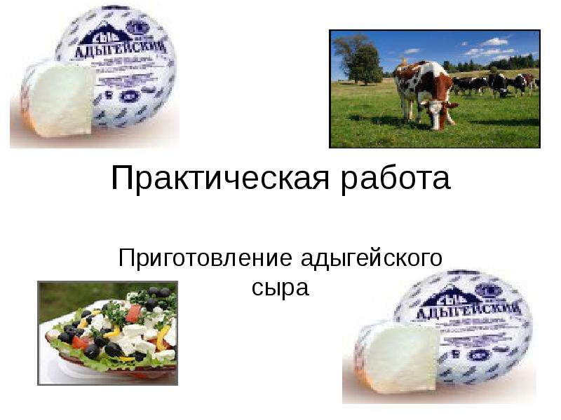 Презентация Технология приготовление адыгейского сыра
