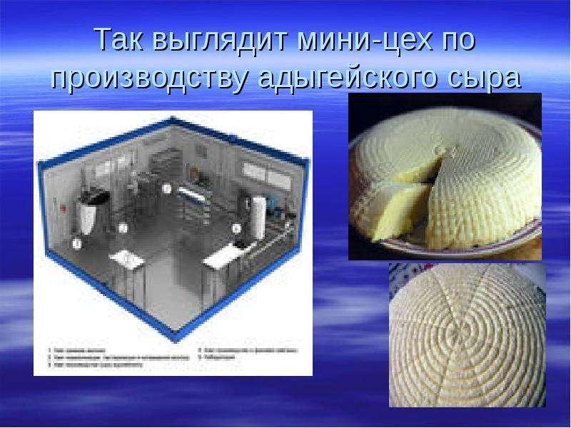 Так выглядит мини-цех по производству адыгейского сыра